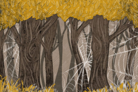 Drawing on a forest with spiderwebs in the trees